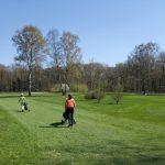 SALVO Golf 2016